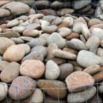 Pebbles Plana